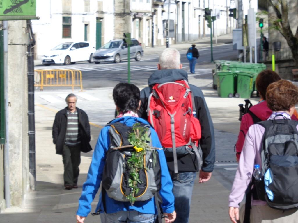 mochila com flores no Caminho de Santiago