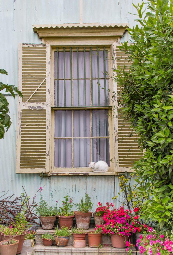 Fachada de casa de zinco com um gato na janela, em Valparaíso
