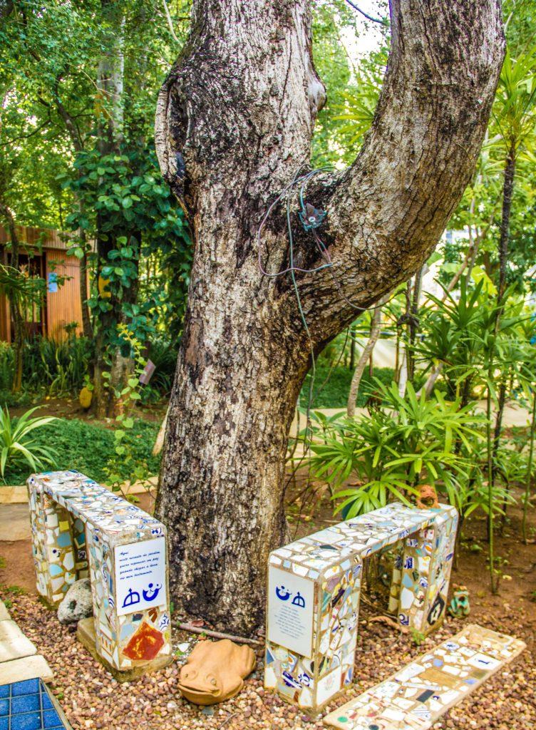Bancos de alvenaria decorados com azulejos em um jardim, com uma árvore grande atrás, na casa do rio vermelho