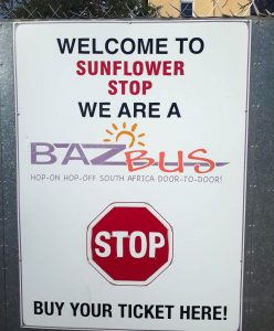 "Placa ""welcome to Sunflower Stop, we are a baz bus stop"""